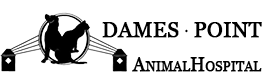 Dames Point Animal Hospital